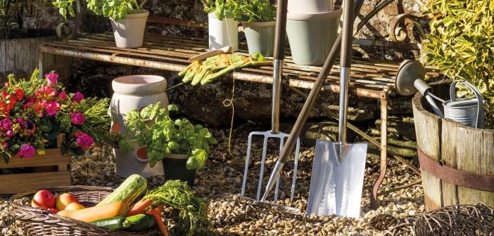 August 2015 - Gardening Special - Issue 242