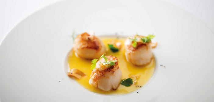 May 2016 - Cookery - Seared Scallops with Lemon Butter Sauce - Issue 251