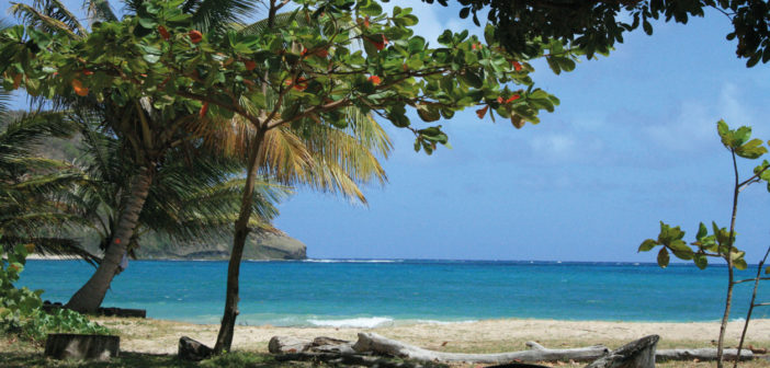 Destination Abroad: Exotic Islands - February 2017 - Issue 260