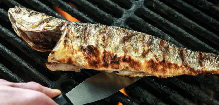 Cookery - BBQ Seabass with Fennel - Issue 265