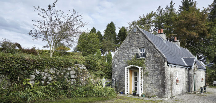 Wicklow Home – July 2017 – Issue 265