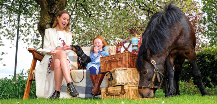 Destination Ireland: Summer Festivals - June 2017 - Issue 264
