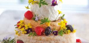 September 2017 - Cookery - Celebratory Cheese Cake - Issue 267