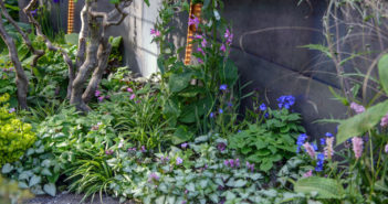 Chelsea Flower Show - August 2017 - Issue 266