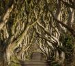 Destination Ireland: Game of Thrones - November 2017 - Issue 269