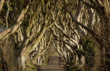 Destination Ireland: Game of Thrones - November 2017 - Issue 269
