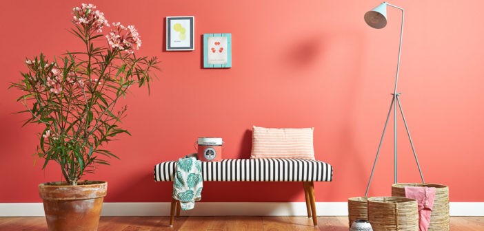 Painting & Decorating - May 2018 - Issue 275