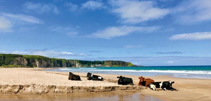 Destination Ireland: Beaches U2013 July 2018 U2013 Issue 277 Living