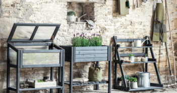 Gardening Special - August 2019 - Issue 290