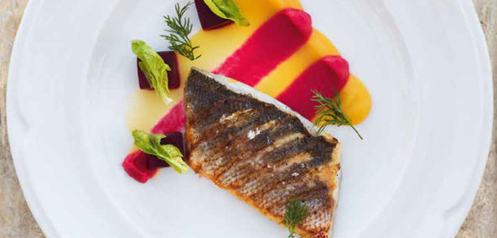 March 2020 - Cookery - Dorado with a Duo of Colourful Beetroot Purées - Issue 297