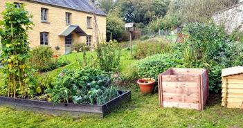 Gardening - July/August 2020 - Issue 300