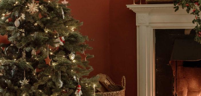 Christmas Tree - December 2020 - Issue 304