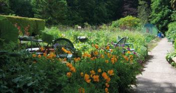 Gardening - February 2021 - Issue 306