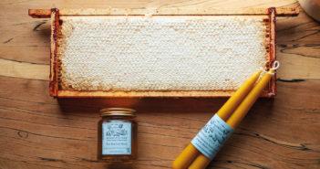 Honey - July 2021 - Issue 311